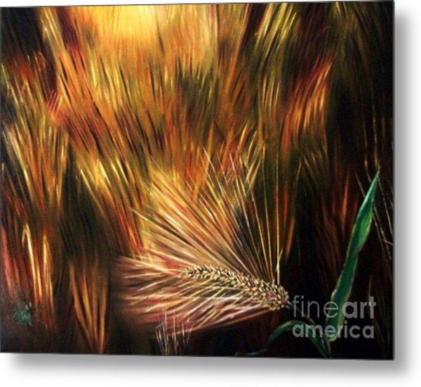 Blessed Seeds Collection - Fields Of Gold Metal Print