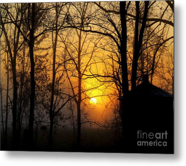 Bloom II Morning Mist Sunrise Metal Print