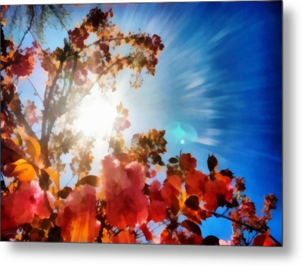 Blooming Sunlight Metal Print