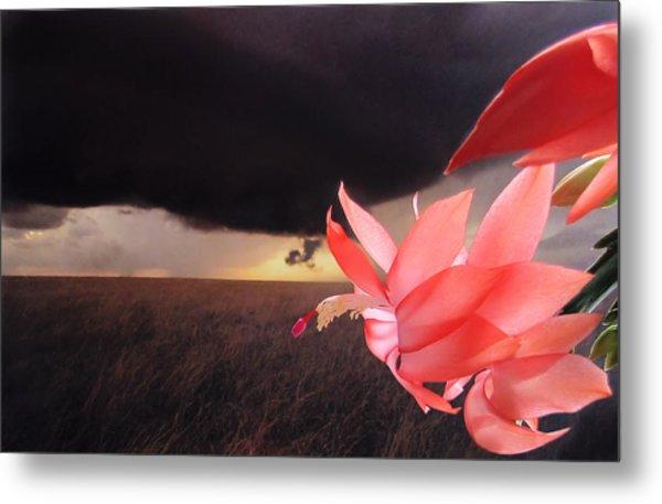 Blooms Against Tornado Metal Print