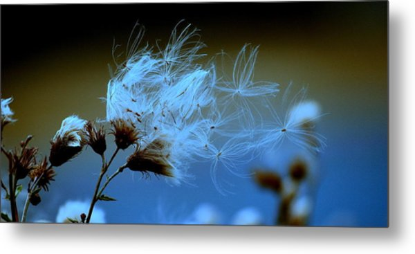 Blowing Away Metal Print