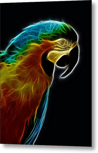 Blue And Gold Macaw Frac Metal Print