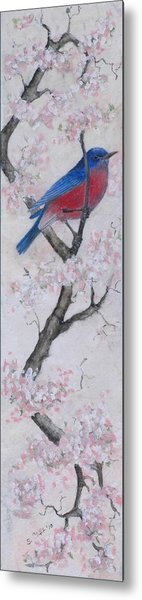 Blue Bird In Cherry Blossoms 2 Metal Print by Sandy Clift