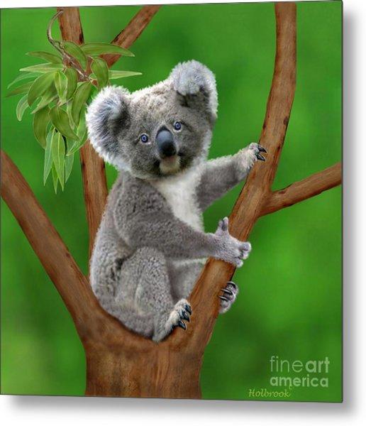Blue-eyed Baby Koala Metal Print