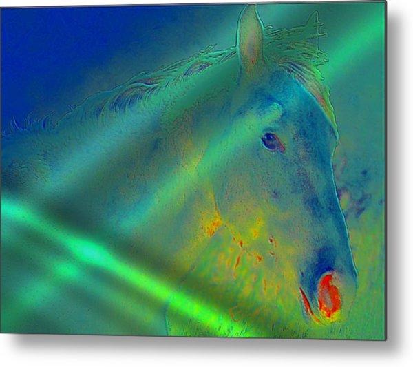 Blue Eyed Horse Metal Print by Ernestine Manowarda