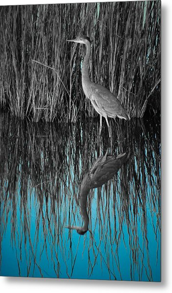 Metal Print featuring the photograph Blue by Francis Trudeau