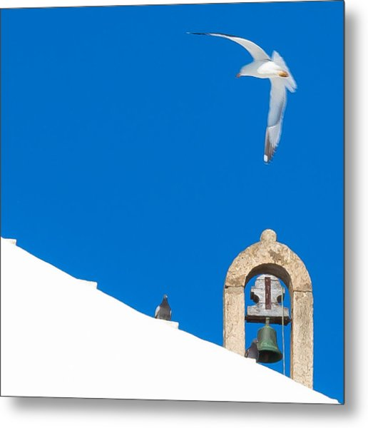 Blue Gull Metal Print