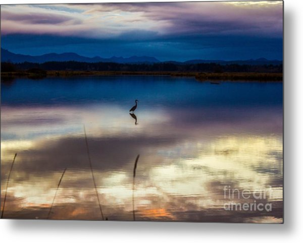 Blue Heron Sun Set Metal Print
