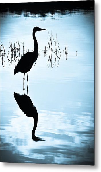 Metal Print featuring the photograph Blue Herons by Francis Trudeau