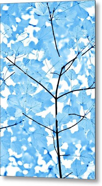 Blue Leaves Melody Metal Print