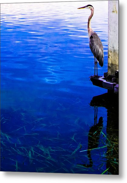Blue Ledge Metal Print by Christy Usilton
