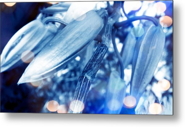 Blue Mood Of Orchids Metal Print