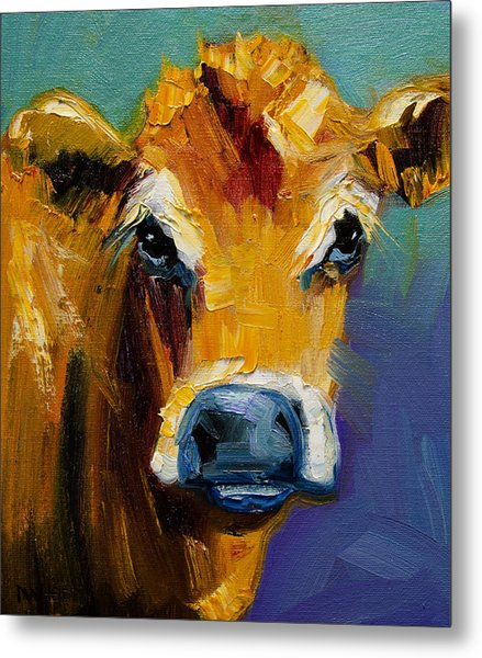 Blue Nose Cow Metal Print
