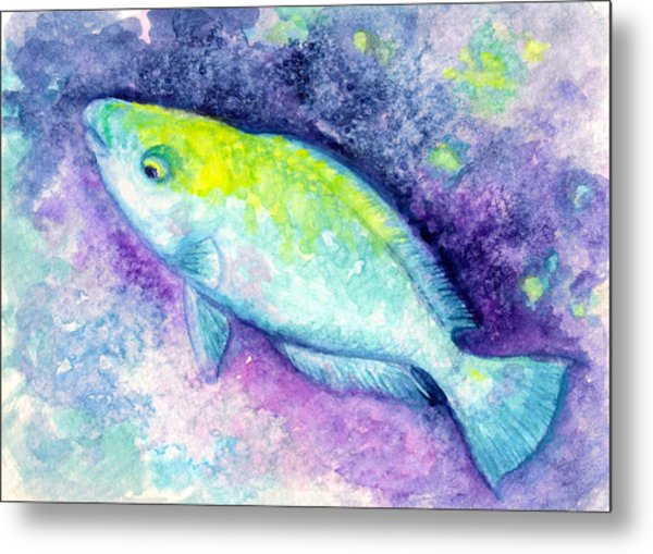 Blue Parrotfish Metal Print