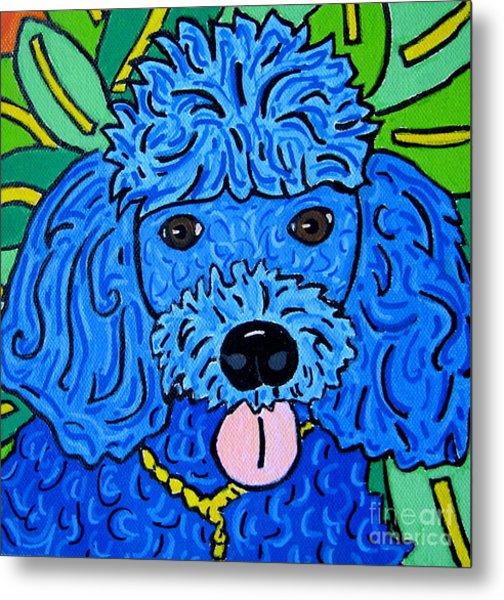 Blue Poodle Metal Print by Susan Sorrell