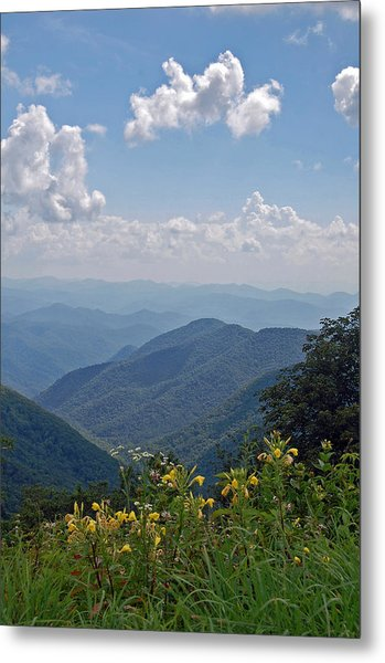 Blue Ridge Blossoms Metal Print by Mary Anne Baker