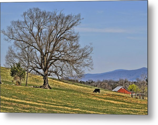 Blue Ridge Farm Metal Print