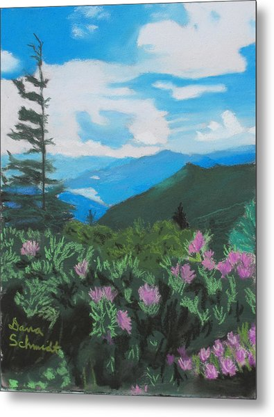 Blue Ridge Parkway In June Metal Print