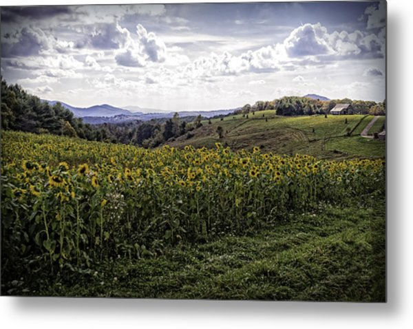 Blue Ridge View Metal Print