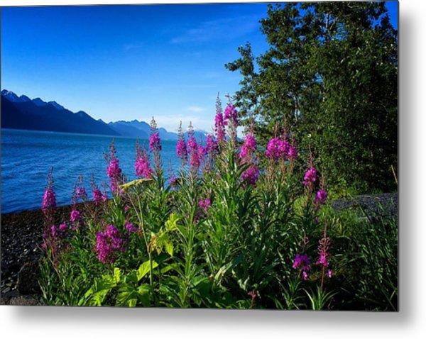 Blue Skies Seward Alaska Metal Print