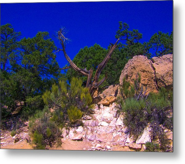 Blue Sky Over The Canyon Metal Print