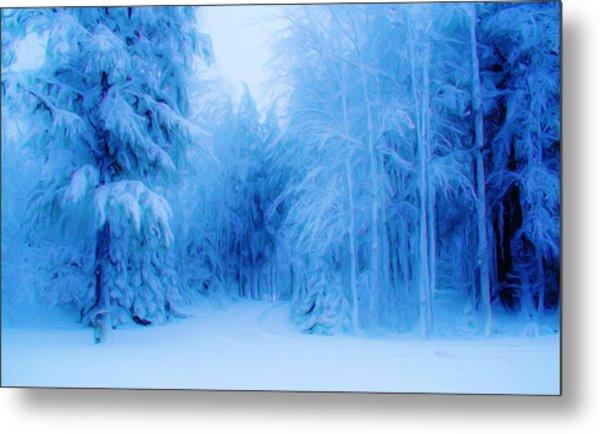 Blue Snowy Night Metal Print