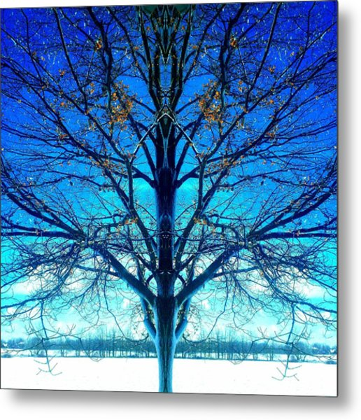 Blue Winter Tree Metal Print