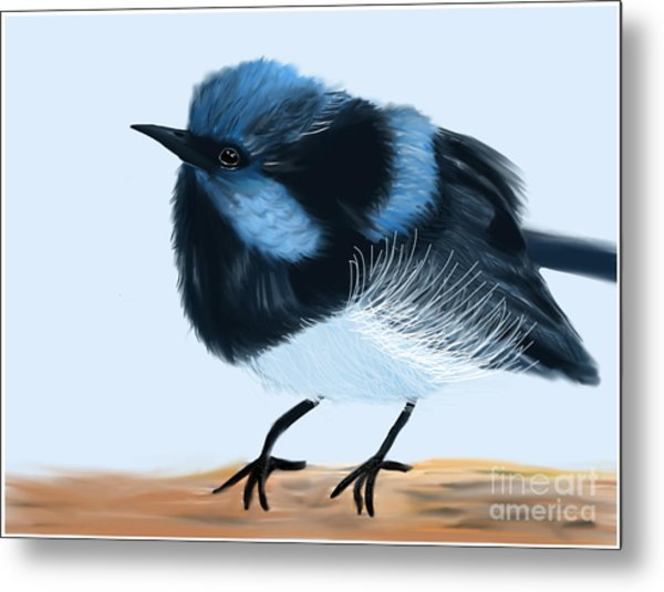 Blue Wren Beauty Metal Print