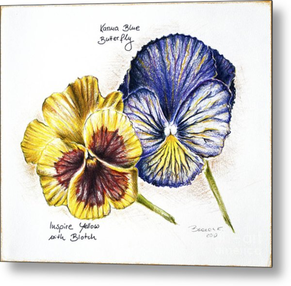 Blue Yellow Pansies Metal Print