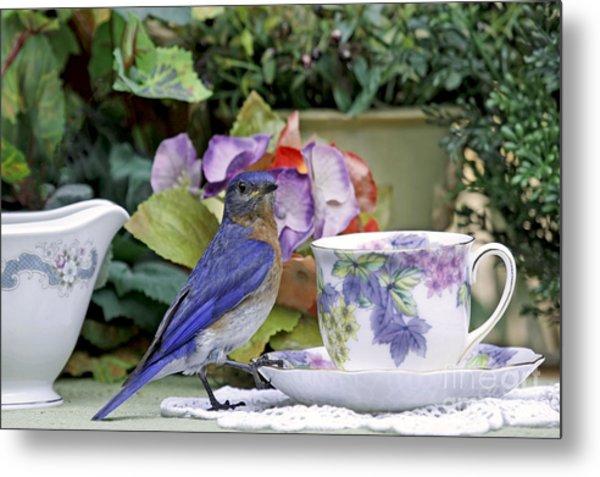 Bluebird And Tea Cups Metal Print