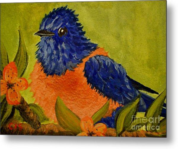 Bluebird Metal Print by Cecilia Stevens