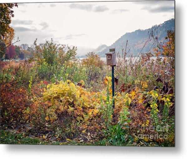 Metal Print featuring the photograph Bluebird House At East Lake Winona by Kari Yearous