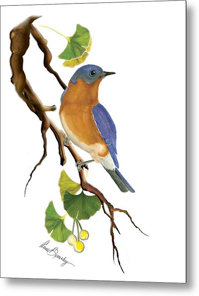 Bluebird In Ginkgo Tree Metal Print