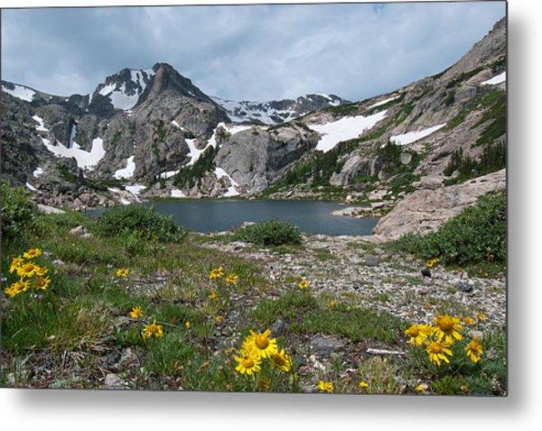 Bluebird Lake - Colorado Metal Print