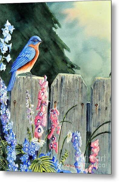 Bluebird Morning Metal Print