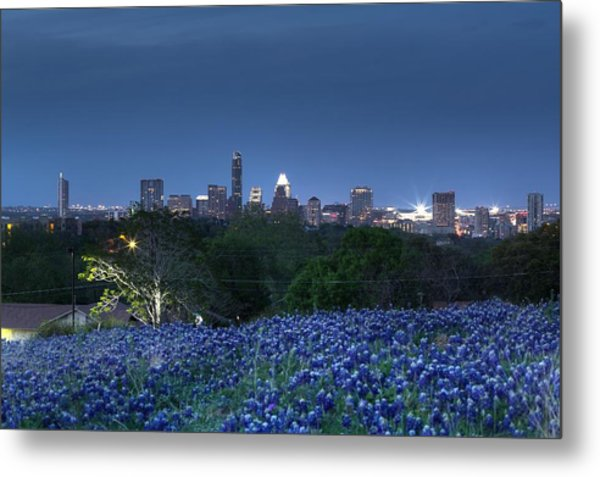 Bluebonnet Twilight Metal Print