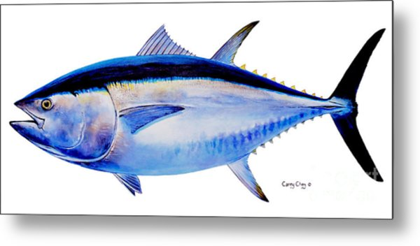 Bluefin Tuna Metal Print