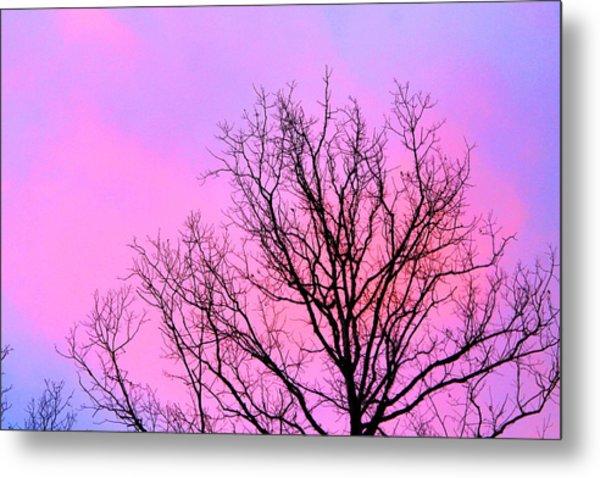 Blushing Sky Metal Print