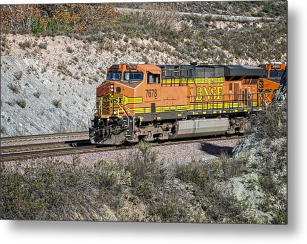 Metal Print featuring the photograph Bn 7678 by Jim Thompson