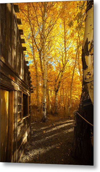 Boat House Among The Autumn Leaves  Metal Print