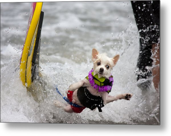 Metal Print featuring the photograph Bobby Gorgeous Wipes Out by Nathan Rupert