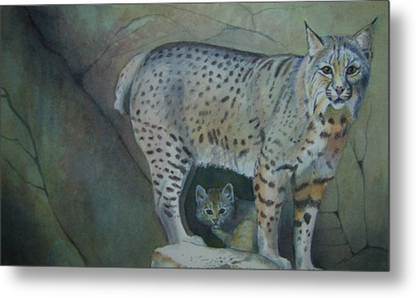 Bobcat And Baby Metal Print by Carmen Durden