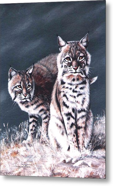 Bobcats In The Hood Metal Print