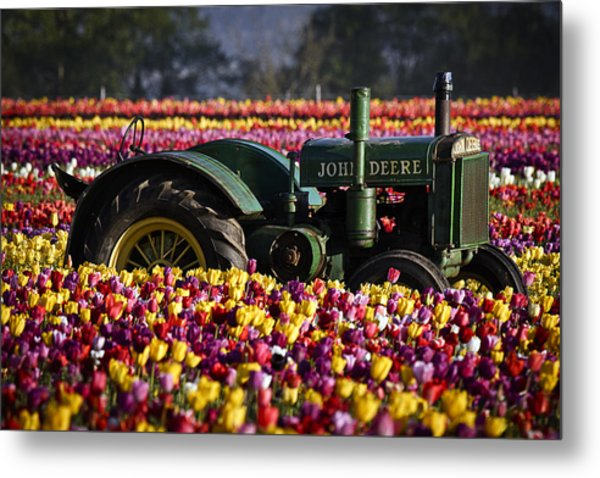 Bogged Down By Color Metal Print