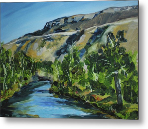 Boise River From Barber Park Bridge Metal Print