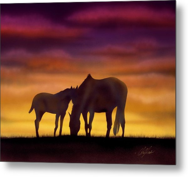 Bonding At Dusk - 2 Metal Print