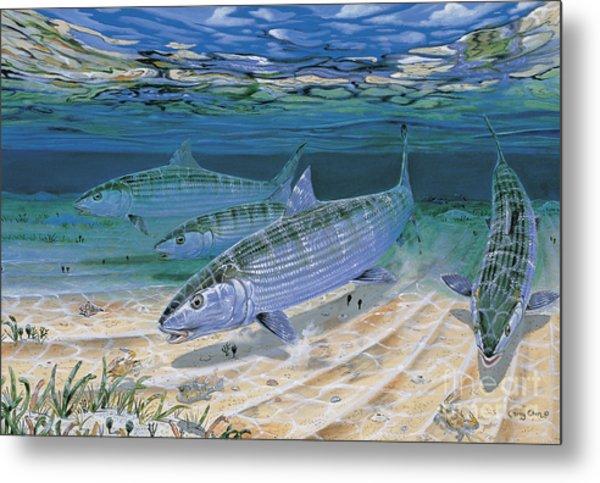 Bonefish Flats In002 Metal Print