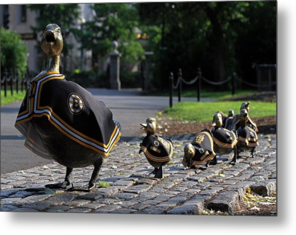 Boston Bruins Ducklings Metal Print