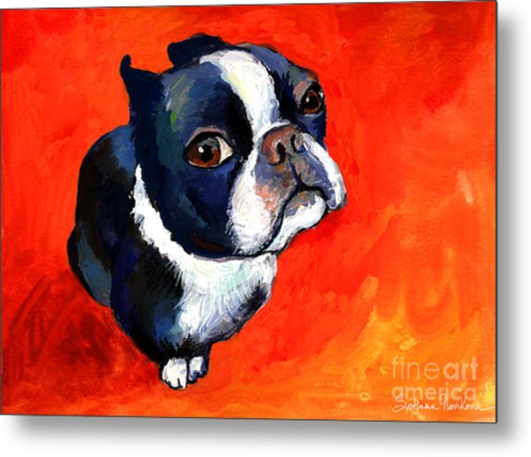 Boston Terrier Dog Painting Prints Metal Print