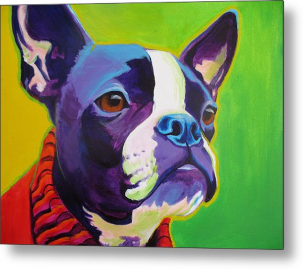Boston Terrier - Ridley Metal Print